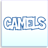 squad year signature template camels